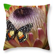 Protea With Speckled Butterfly Throw Pillow