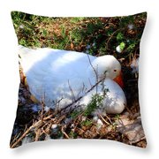 Protecting Her Eggs Throw Pillow