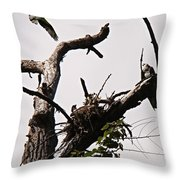 Protector Of The Nest Throw Pillow
