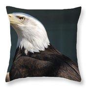 Proud Eagle Throw Pillow