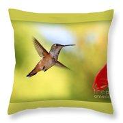 Proud Hummingbird Throw Pillow