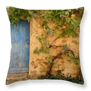 Provence Door 5 Throw Pillow