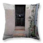 Provence Door Number 33 Throw Pillow