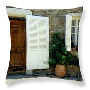 Provence Door Number 4 Throw Pillow