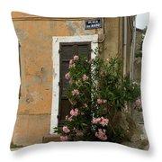 Provence Door Number 9 Throw Pillow
