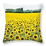 Provencial Sunflowers Throw Pillow