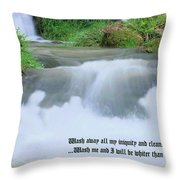 Psalm 51 2 Throw Pillow
