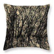 Pseudo Reflection  Throw Pillow
