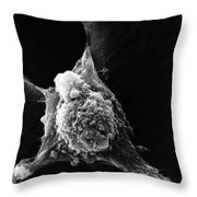 Pseudopodia Sem Throw Pillow by Science Source