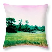 Psychedelic Slew Throw Pillow