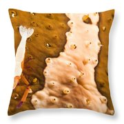 Puerto Galera, Philippines, South East Throw Pillow