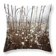 Puffed Wheat Throw Pillow