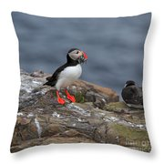 Puffin With Sand Eels Throw Pillow
