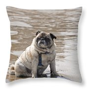 Pug Can't Be Budged Throw Pillow