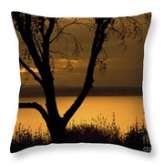 Pugent Sound Silhouetted Tree Throw Pillow