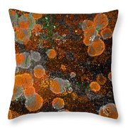 Pumpkin Abstract Throw Pillow