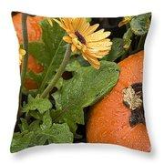 Pumpkin And Gerberas Throw Pillow