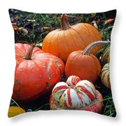 Pumpkin Patch Throw Pillow by Kathy Yates