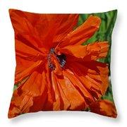 Pumpkin Poppy Throw Pillow