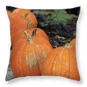 Pumpkins Galore V2 Throw Pillow