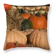 Pumpkins Pumpkins Everywhere Throw Pillow