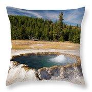 Punchbowl Spring Throw Pillow