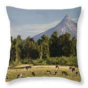 Puntiagudo Volcano In The Background Throw Pillow