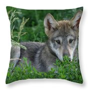 Pup In The Grass Throw Pillow