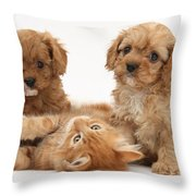 Puppies And Kitten Throw Pillow
