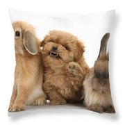 Puppy And Rabbits Throw Pillow