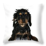 Puppy Bathtime Throw Pillow