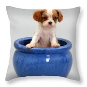 Puppy In A Pot Throw Pillow by Jane Burton