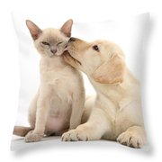 Puppy Licking Cat Throw Pillow