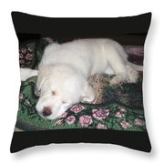 Puppy Nap Throw Pillow