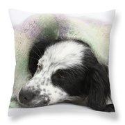 Puppy Sleeping Under Scarf Throw Pillow