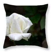 Pure As Snow Throw Pillow