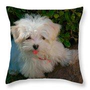Pure Cuteness Throw Pillow