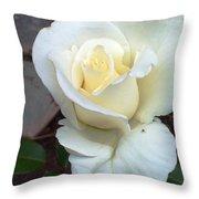 Pure White Rose Throw Pillow