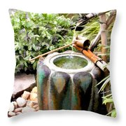Purification Basin For Tea Ceremony Throw Pillow