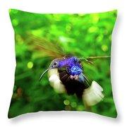 Purple And Blue Hummingbird  Throw Pillow