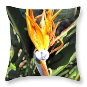 Purple And Orange Flower Accent Fx  Throw Pillow
