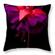 Purple And Pink Beauty Throw Pillow