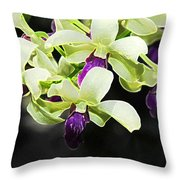 Purple And White Orchid Accent Fx  Throw Pillow