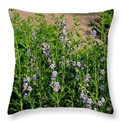 Purple And White Pinwheels Throw Pillow
