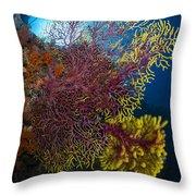 Purple And Yellow Sea Fan In Raja Throw Pillow