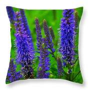 Purple Blue Yellow Green Throw Pillow