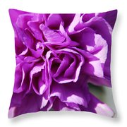 Purple Carnation Throw Pillow