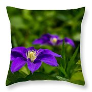Purple Clematis Flower Throw Pillow