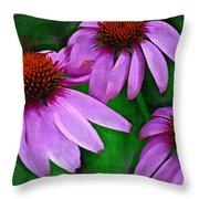 Purple Coneflower Trio Throw Pillow