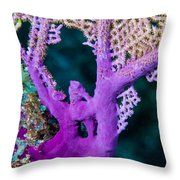 Purple Coral Throw Pillow